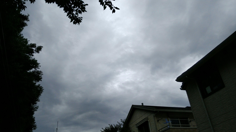 img 20180705 0922411564102056 - まだ雨は降らず。